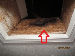 Attic hatch seal
