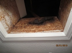 Attic hatch mold